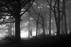 C.F. Saonensis dlf - Poggi Elisa - Tempo di nebbia
